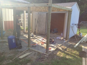 The coop, in progress.  My ridiculously talented carpenter/husband has the redesign in progress.  Cluckingham Palace (I WILL have a sign made up) will probably be nicer than our house with shade via a chickeny pergola, insulated walls, lighting inside and out, and a washable surface in and out.
