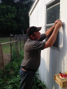 Securing a window that he identified as a fatal flaw in the safety features of the coop.