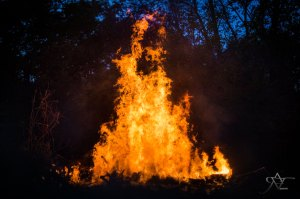 still fire