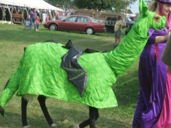 Costume Class - Not my llama but how cool?